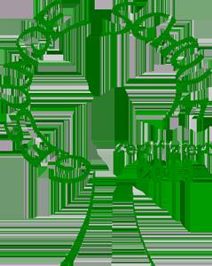 Logo Gesunde Schule 2010